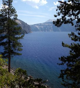 Deep blue water of Crater Lake glimpsed between pine trees. Nature's healing power.