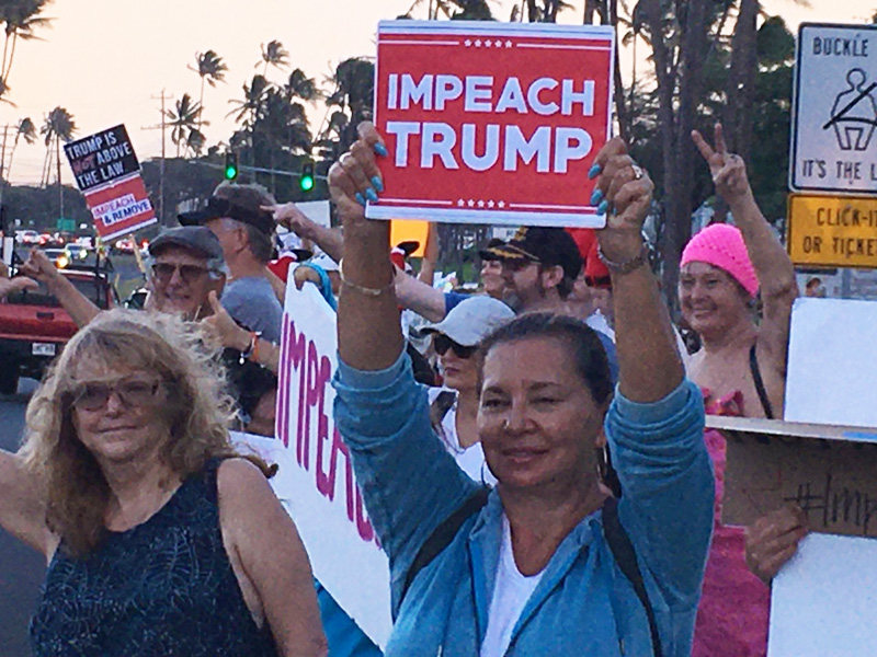 "Line of people against a twilight sky holding ""Impeach Trump"" signs and waving. Cracks in the political life are cracks of possibility."