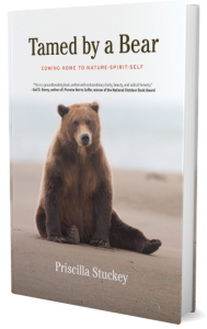 Tamed by a Bear book image - a story of waking up to spiritual connection through shamanic-style journeys