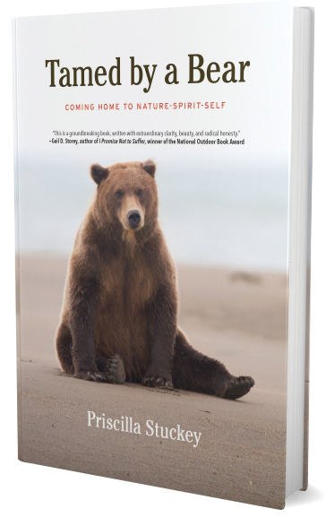 Book image for TAMED BY A BEAR: COMING HOME TO NATURE-SPIRIT-SELF. A grizzly bear sitting on a beach looking bemused. The book is a memoir of spiritual dialogue with the still small voice in the form of a spirit bear.