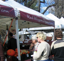 People addressing climate change by buying produce at an organic farm stand